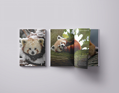 Yes magazine - say yes for red pandas!