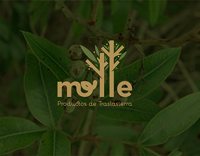 Molle - Productos orgánicos