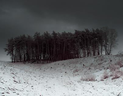 17 01 FH Schnee