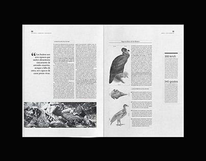 Magazine | Animalía