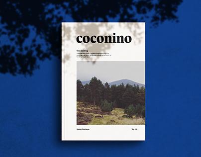 Coconino No.01 - Tree Planting
