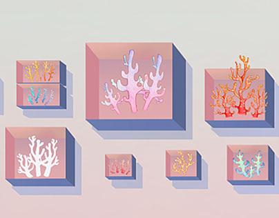Coral Museum