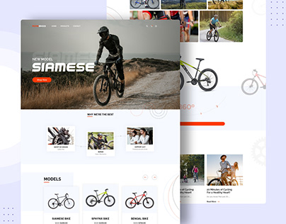 Online Cycle Store
