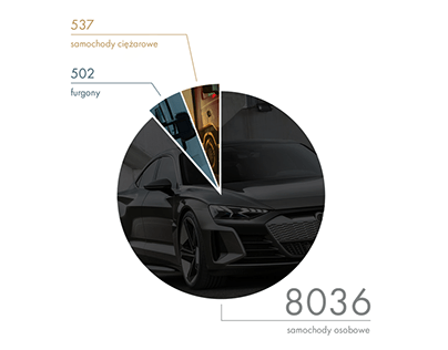 car thefts - INFOGRAPHIC