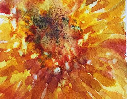 textures and studies in watercolor