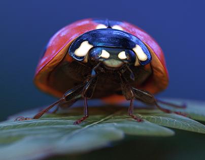 Bugs theater. CGI