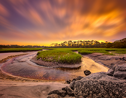 Marshes on Amelia Island, FL