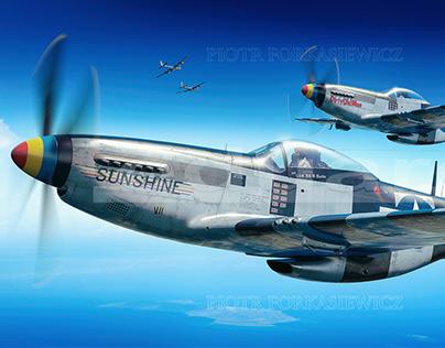P-51K Mustang - Eduard Model Accessories boxart