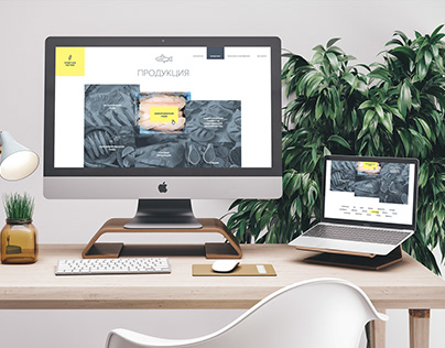 Portus Pater Website Design