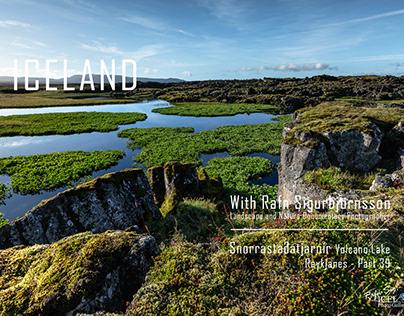 Wetlands (Votlendi) in Iceland│ Part 38 (COPY)