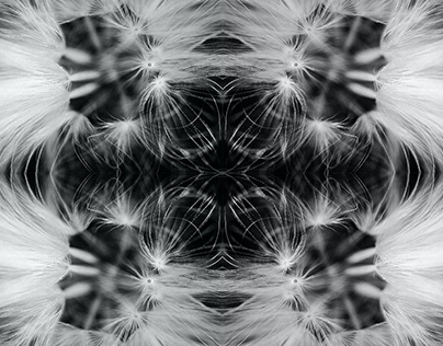 Kaleidoscope Art Experimentation