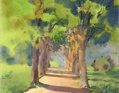 Sunny alley. Watercolor landscape