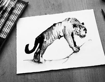 INK ANIMALS / Desigual AW18/19