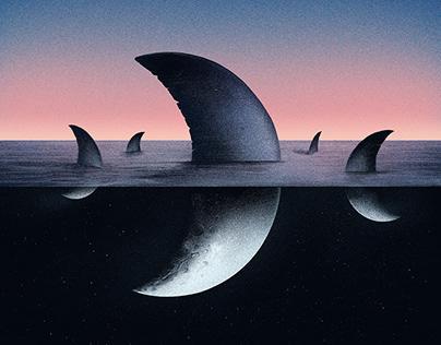 Sea the moon - Sunset & Sunrise