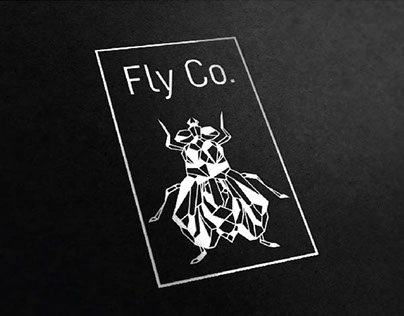 Fly Co. Self-Initiated Project
