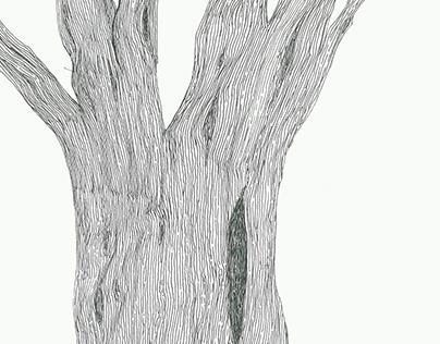 Tree Veins