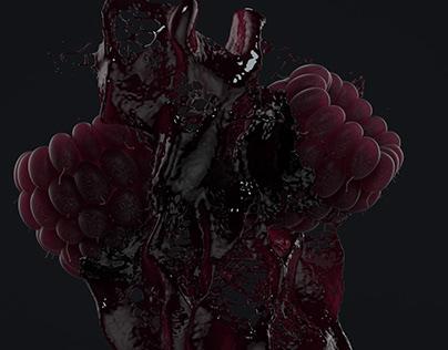 Raspberries / 3D Fluid Simulation