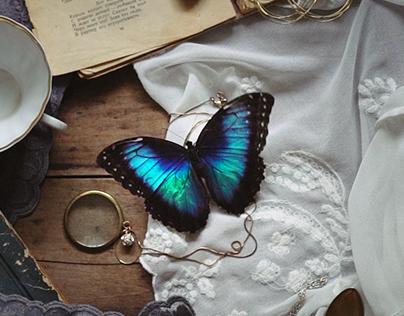 cinemagraphs #9: butterflies