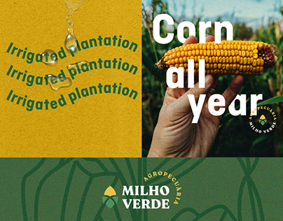 Agropecuária Milho Verde - Identity
