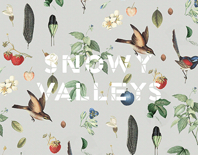Snowy Valleys Identity