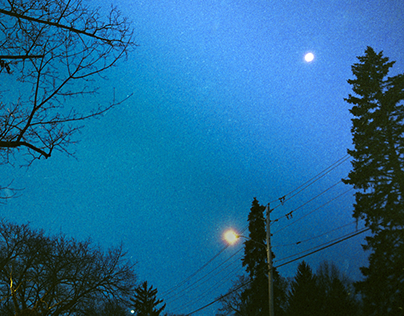 Winter Evening Photos