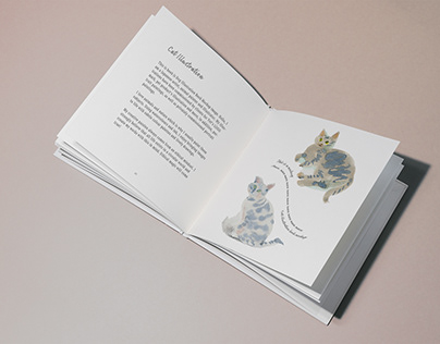 Cats Picture Book *mock-up