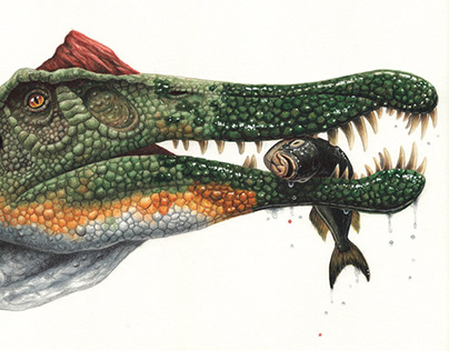 Dinosaur illustrations 2