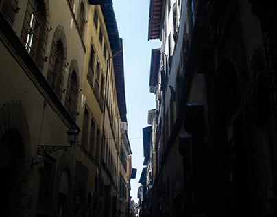 Florence Landscape (Photography)