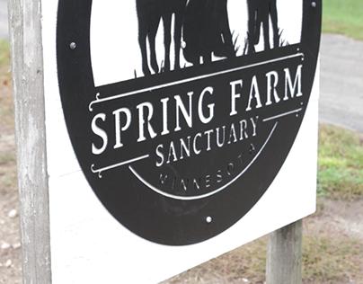 Spring Farm Sanctuary Promo Video