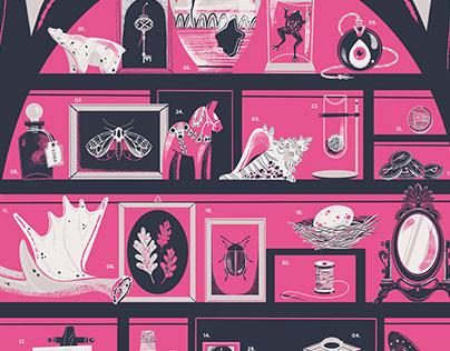 A Cabinet of Curiosities
