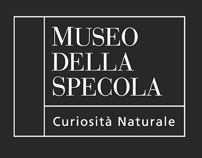 Museo della Specola | Museum Rebrand