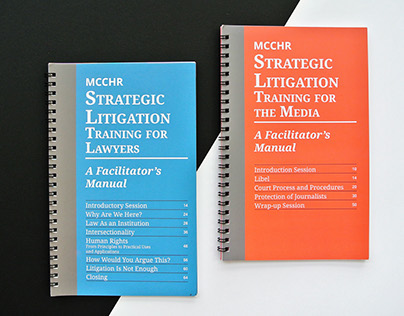 Strategic Litigation Manual