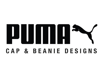Puma Project