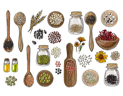 Vector food icons. Spices, nuts