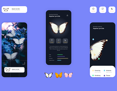 Butterfly Identification App
