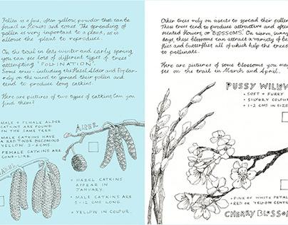 Winter/Spring Field Guide - Mead Gallery