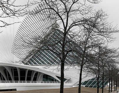 Milwaukee Art Museum | Architect: Santiago Calatrava