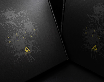 Slow Decay Limited Edition Boxset