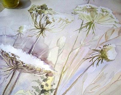 Autumn Herbs, Botaical illustration.
