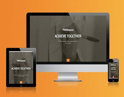 PM Alliance Website Re-Design