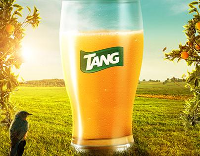 Tang Visual