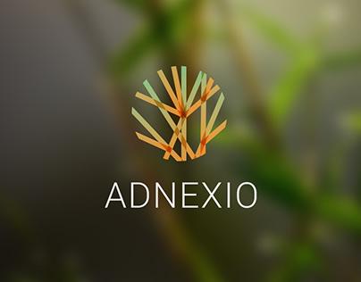 The Adnexio logo design