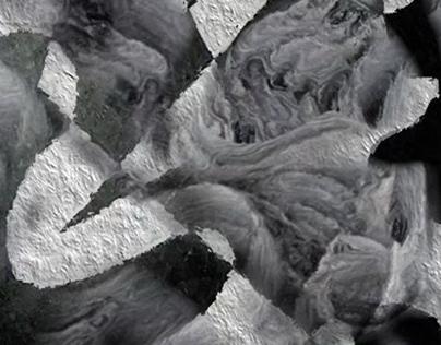 SOFT SHADES OF GRAY