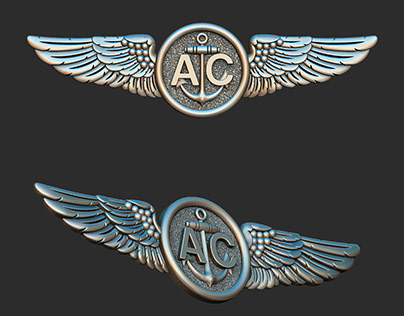 Navy Air Crew badge