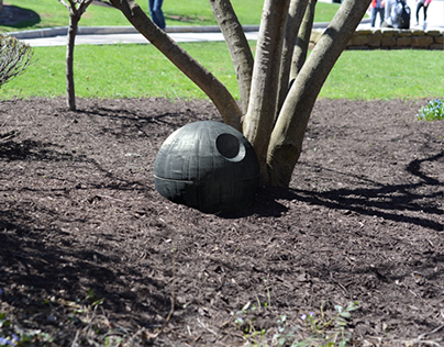 Death Star Under A Tree