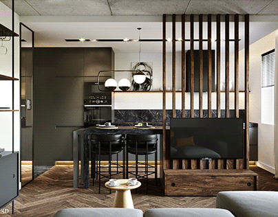 Visualizations of the male apartment design