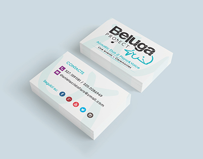 Beluga Project // Acoustic Duo