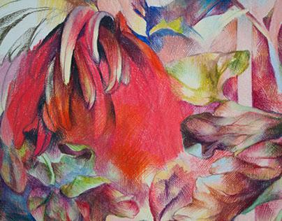 Senior Thesis: Red Chrysanthemums