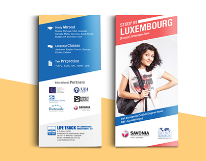 Promotional 3 Fold Brochure