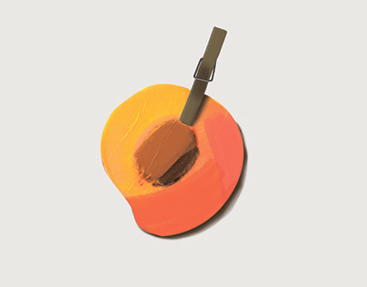 Dried Fruit Design concept art